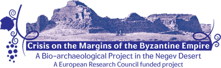 Crisis on the Margins of the Byzantine Empire logo